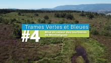 #4-Montselgues