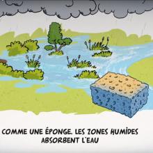 Film Agence de l'Eau RMC sur les zones humides